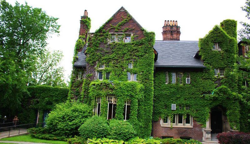 Green house in Toronto