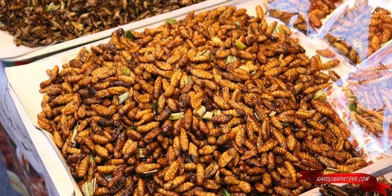 Fried larvaes in Thailand
