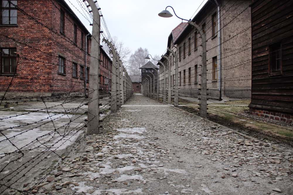 """should auschwita be saved Can auschwitz be saved following instructions issued by ss chief reinhard heydrich—""""the leading strata of the population should be rendered harmless."""