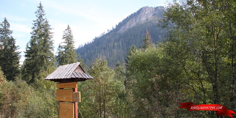 2 Dolina Bialki stop