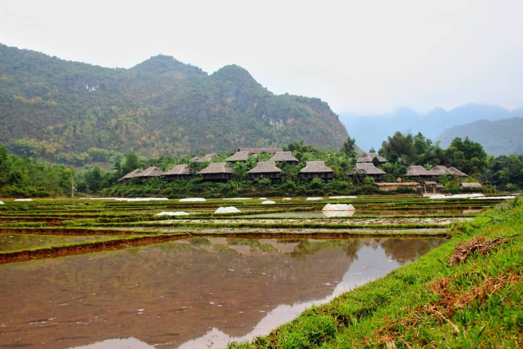 Mai Chau rice fields