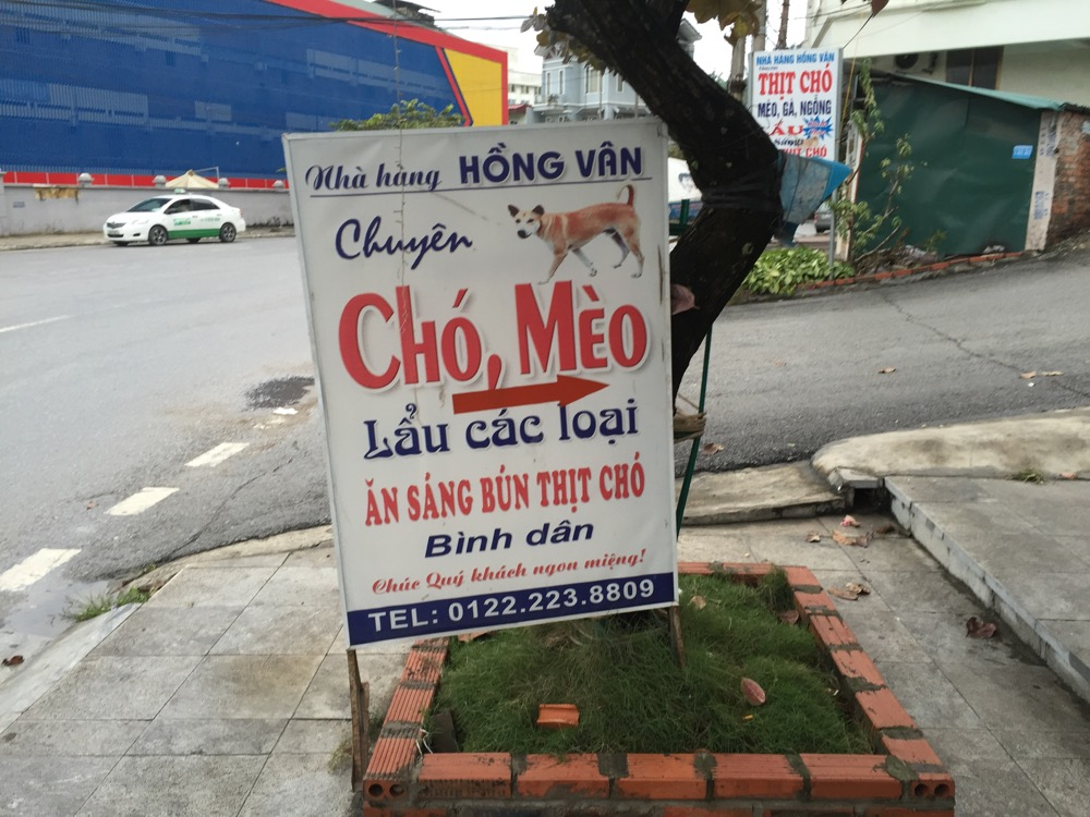 Cho Meo dog meat in Vietnam interesting facts