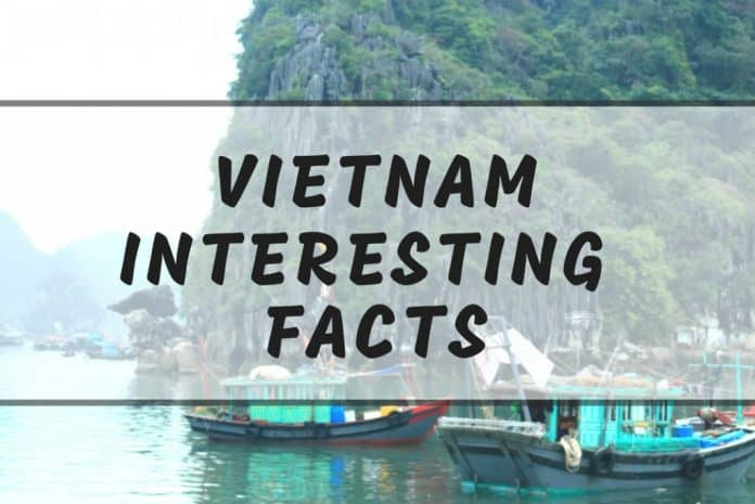 Interesting Vietnam Facts 10 Things You Didnt Know About