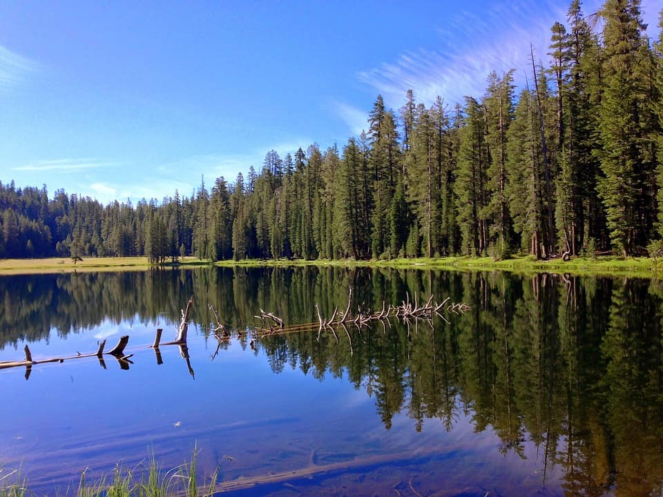 Yosemite National Park Top 10 things to do while in California