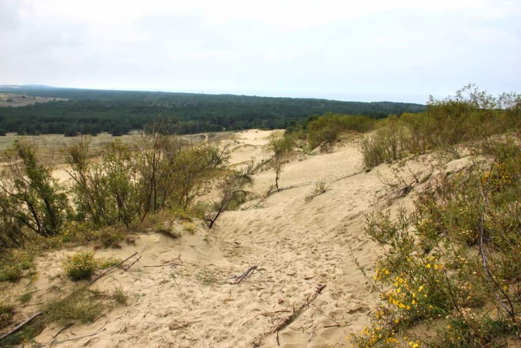 Dunes Nida