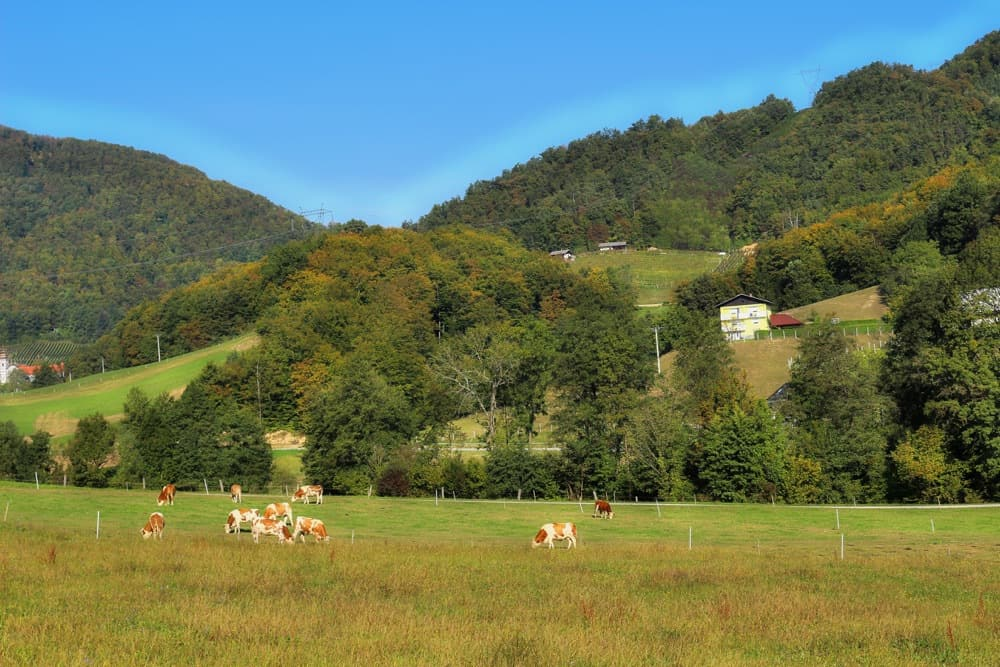 podcetrtek-slovenian-village