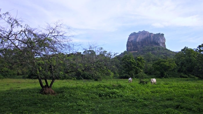 lion-rock-sigiriya-sri-lanka-2