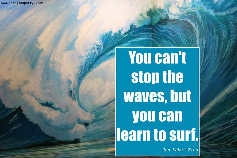 you-cant-stop-the-waves-but-you-can-learn-to-surf