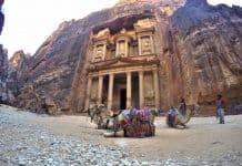 Camels in Petra Jordan