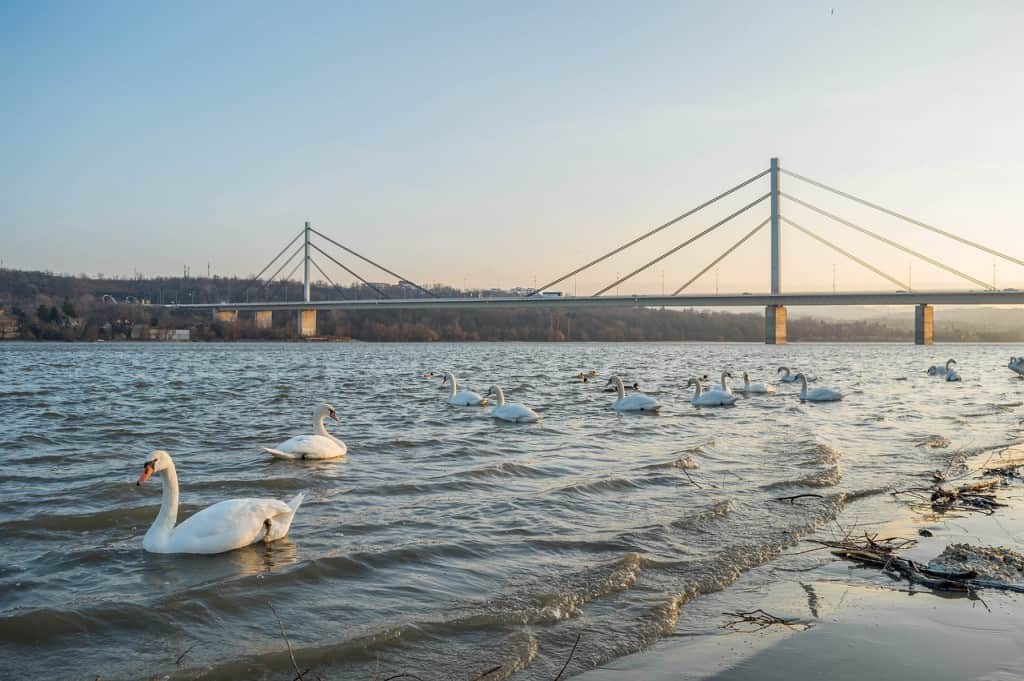 Novi sad best place to visit in 2019