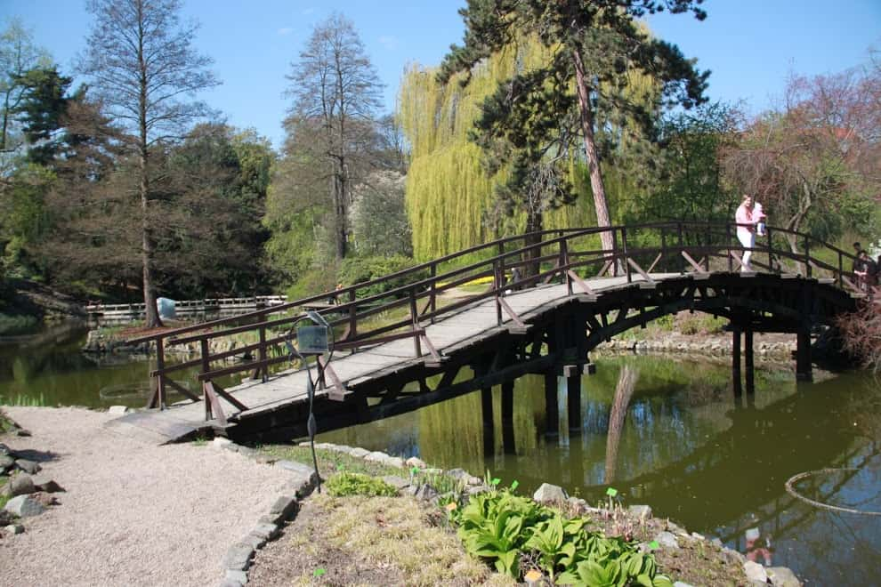 ogrod japonski wroclaw bridge