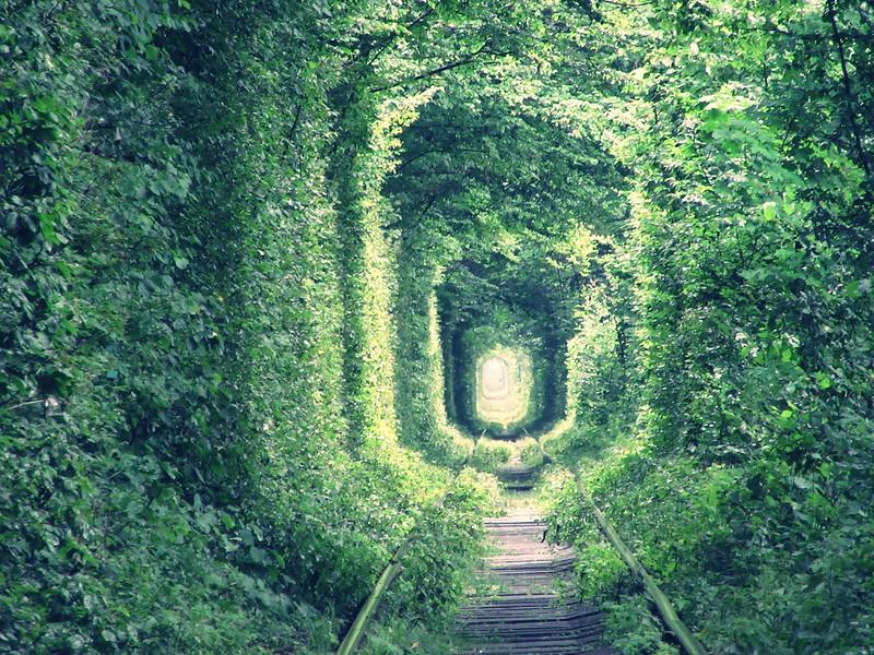 tunnel of love in Klevan Ukraine.